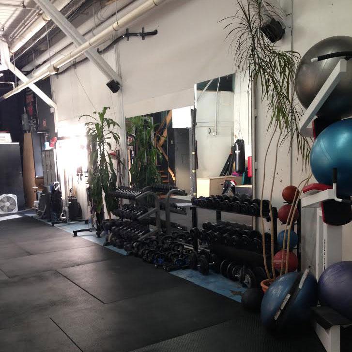 Gym Area - 2
