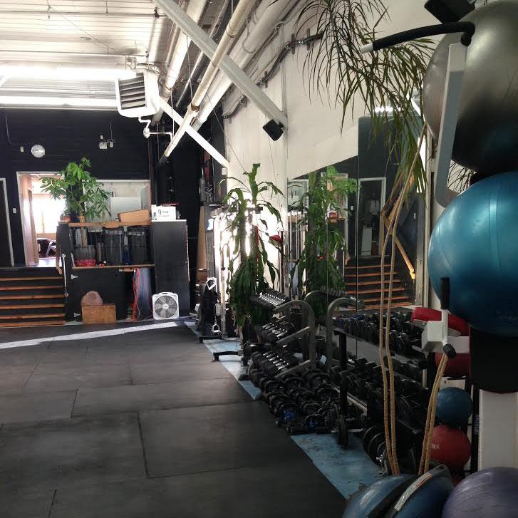 Gym Area - 3